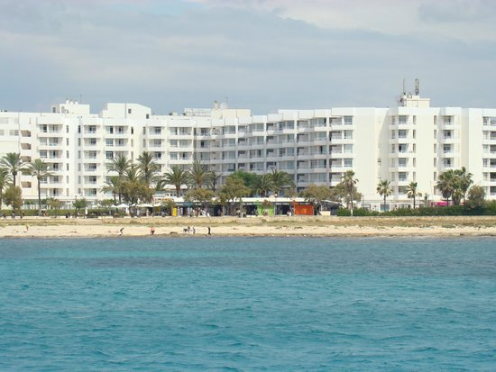 Hotel Palia Sa Coma Playa: vue de la mer