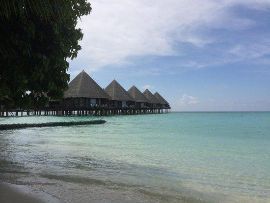 Velidhu Island Resort: The Water-bungalows