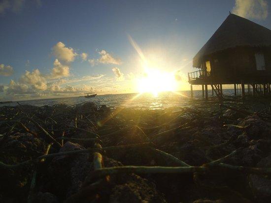 Velidhu Island Resort: Sunset