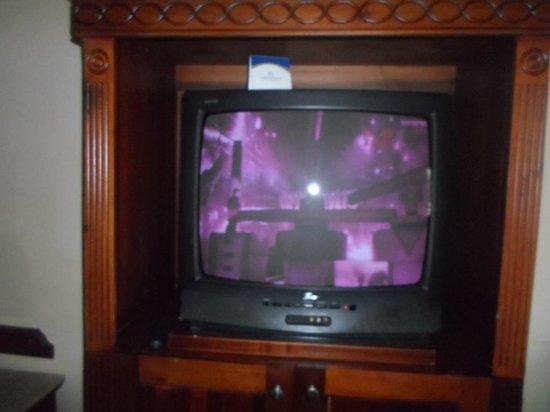 Grand Palladium Palace Resort Spa & Casino : tv blanco y rosa
