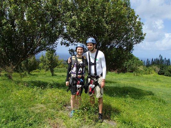 Big Island Eco Adventures II Zipline Canopy Tour: Macadamia nut orchard with ocean behind