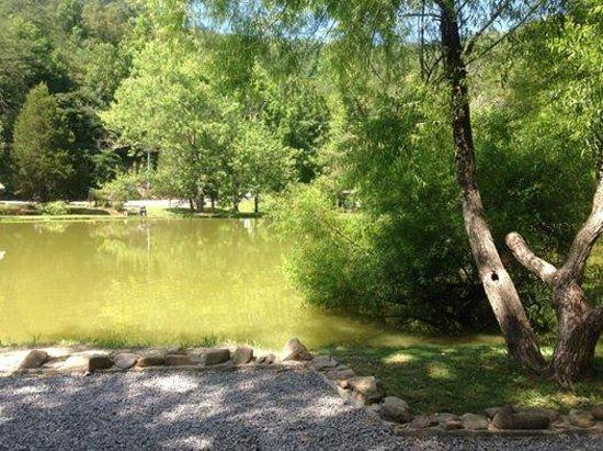 Big Rock Dude Ranch at Ponderosa : Fishing Pond
