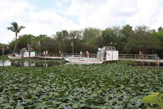 Everglades Safari Park: Airboat