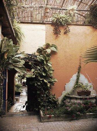 Hotel Posada del Centro: Agradebla patio trasero