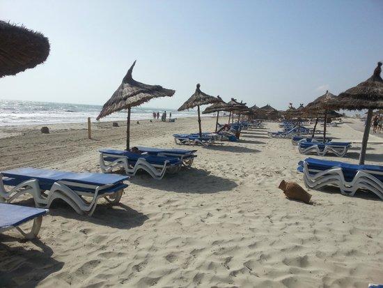 Fiesta Beach Club Djerba : transats