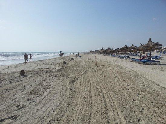 Fiesta Beach Club Djerba : plage nettoyée ts les matins