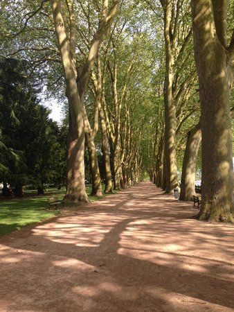 Hotel Diderot: Chinon Park