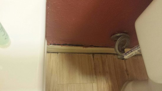 Red Roof Inn Columbia East - Ft Jackson : Walls rotting out in bathroom in room 126
