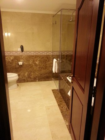 Rex Hotel: Shower and toilet