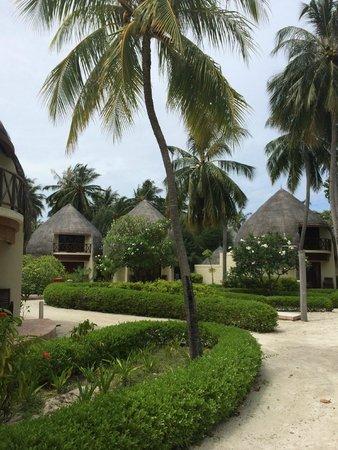Jacuzzi Beach Villas
