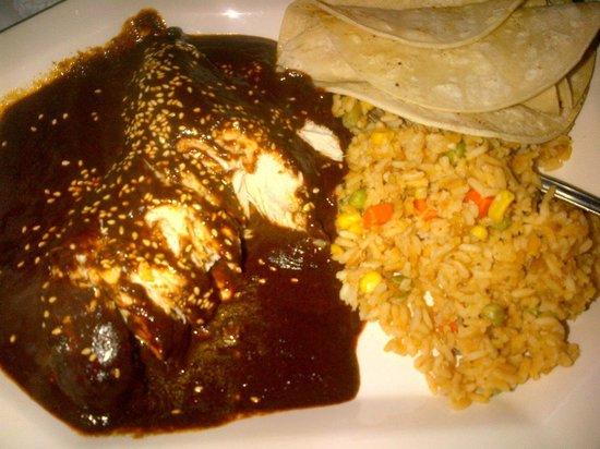 Chichimecas : Chicken Mole