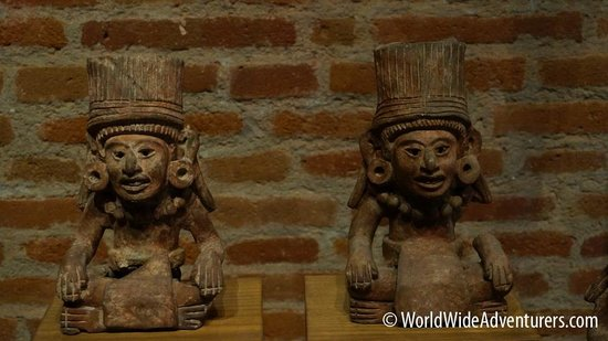 Museo Xolo : Ancient Artifacts