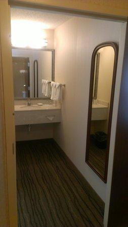 SpringHill Suites Minneapolis Eden Prairie: Bathroom sink area
