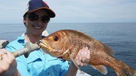 Clearwater Island Lodge: Snapper