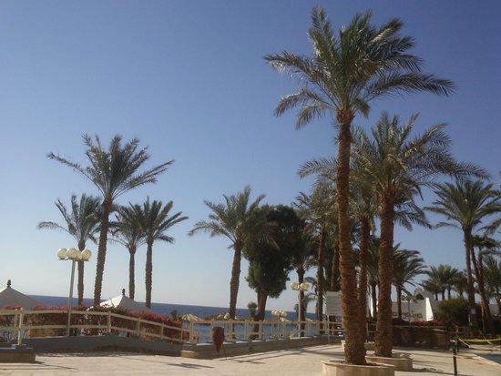 Taba Hotel and Nelson Village : Пляж
