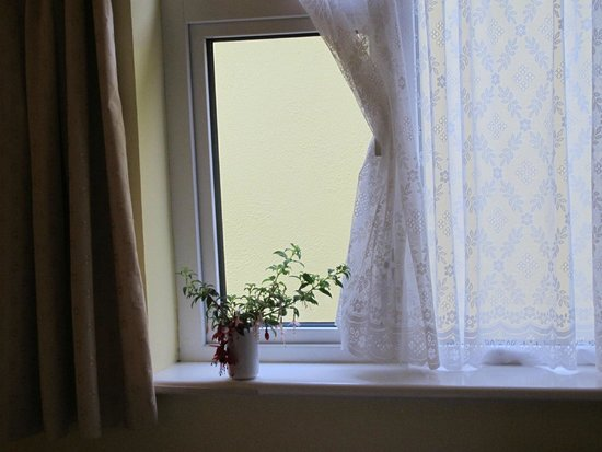 Sea Breeze Bed and Breakfast : vue imprenable sur le mur de la chambre pour célibataire