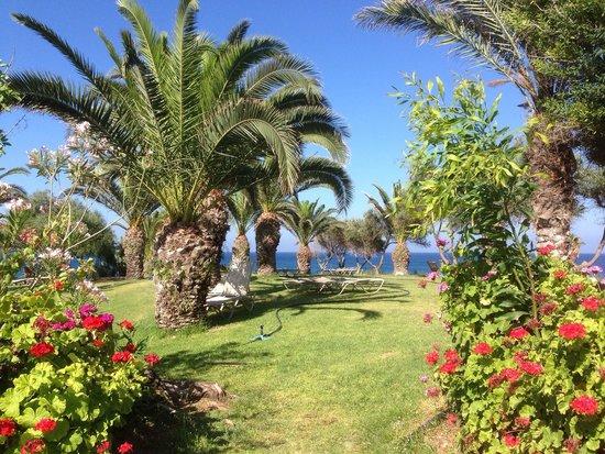 Crystal Springs Beach Hotel: Some of garden area