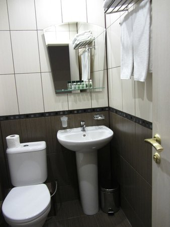 Pushkin Hotel: Bathroom with lovely amenities (lotion, shower gel, dental kit etc)