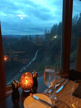 Salish Lodge & Spa: Another great view from the restaurant