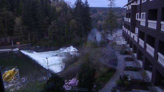 Salish Lodge & Spa: River Room view