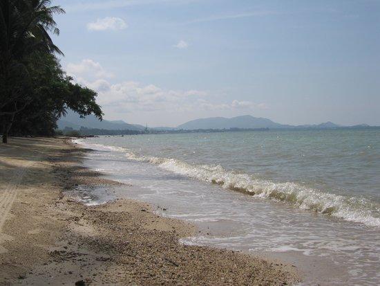 The Passage Samui Villas & Resort : beach