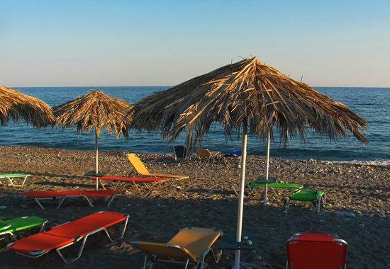 South Coast Hotel: Beach