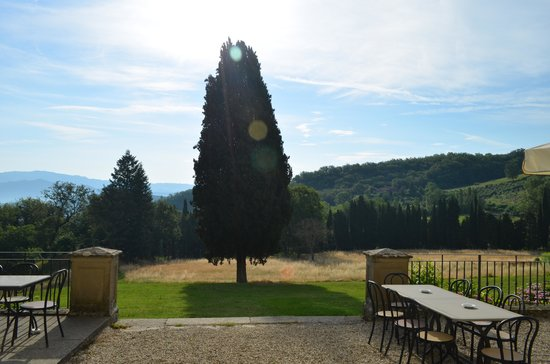 Villa Campestri Olive Oil Resort: Outdoor Dining Morning & Evening