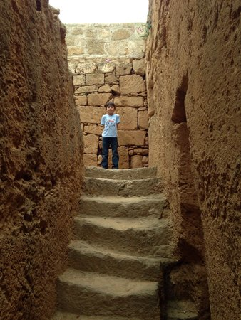 Tombe des rois : Kings tombs