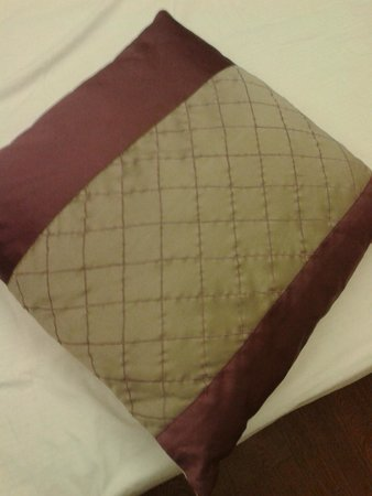 The JRD Luxury Boutique Hotel: Cheated by review and photos:Pillow