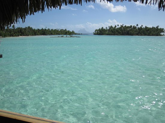 Le Taha'a Island Resort & Spa : View from picture window in Bora Bora View room #4