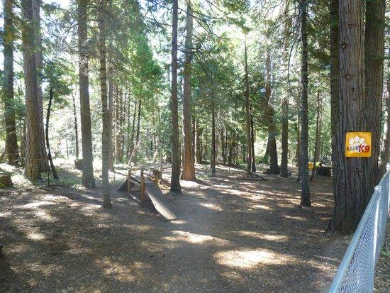 Mt. Lassen / Shingletown KOA: Kamp K9