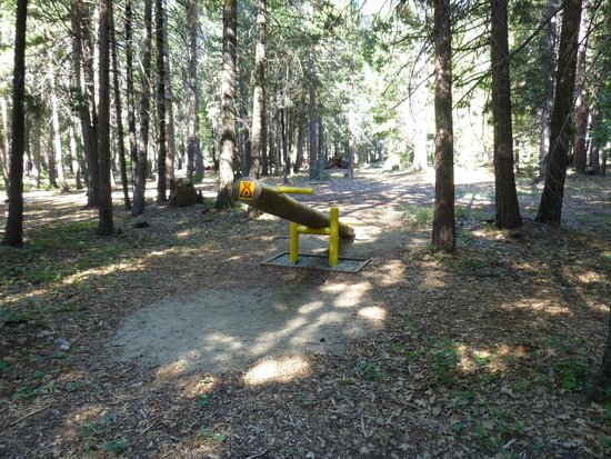 Mt. Lassen / Shingletown KOA: teeter totter