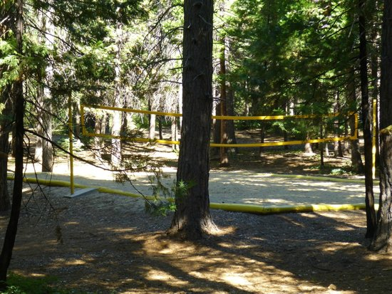 Mt. Lassen / Shingletown KOA: volleyball court