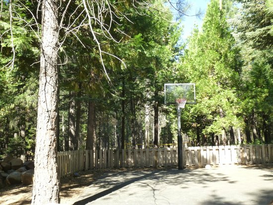 Mt. Lassen / Shingletown KOA: basketball court
