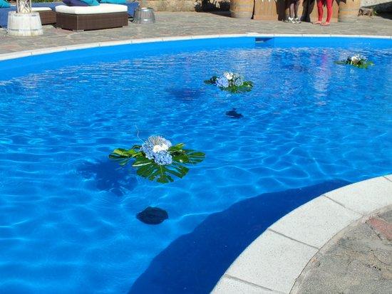 Hotel Bella Luce: Pool