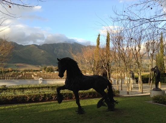 Franschhoek Wine Tram: Grande Provence Wine Farm