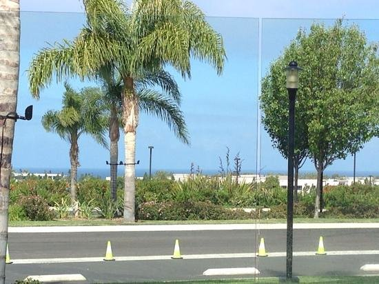 Sheraton Carlsbad Resort and Spa: my breakfast view