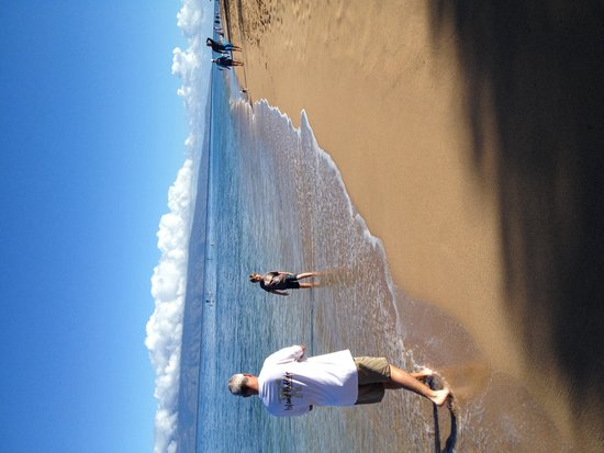 Royal Lahaina Resort: Beach pic from hotel