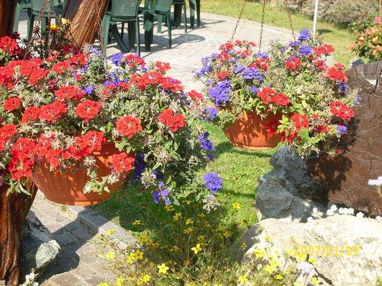 Hotel Comtes de Challant : i fiori della signora Anna