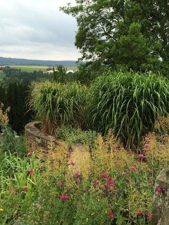 Jardins Panoramiques de Limeuil : Jardin d'eau vu du haut
