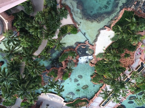 Atlantis, Royal Towers, Autograph Collection : Looking down over the railing of room 17-542