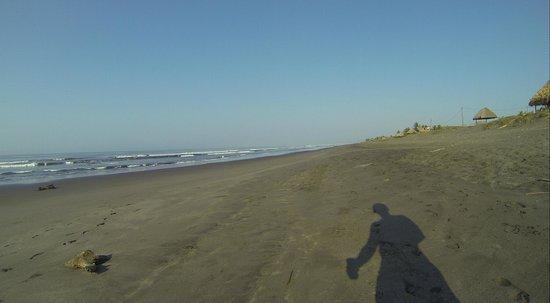 Paredon Surf House: Black Sand Beach goes for miles