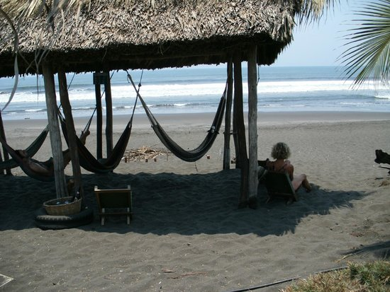 Paredon Surf House: Sock Monkey likes the hammocks