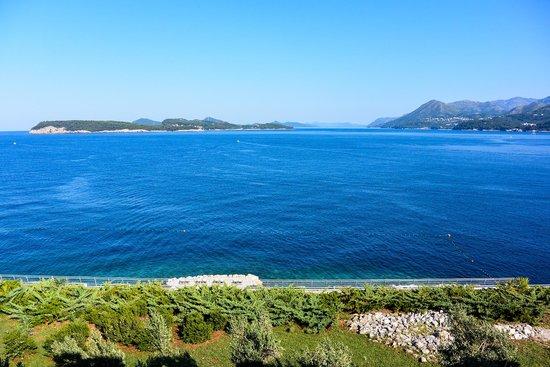 Valamar Dubrovnik President Hotel : Room view