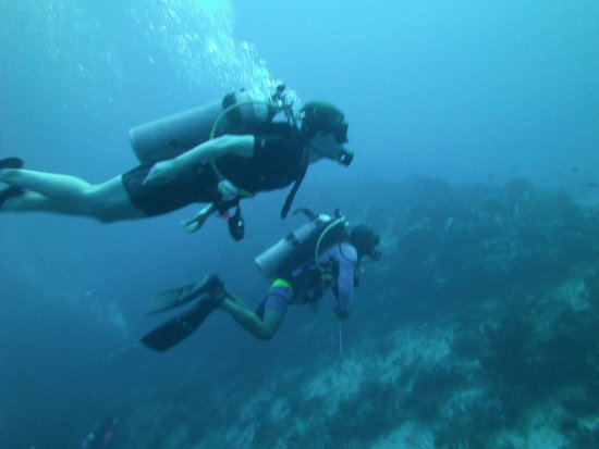 Blue XT Sea Diving : My stepdaughter and Arturo underwater