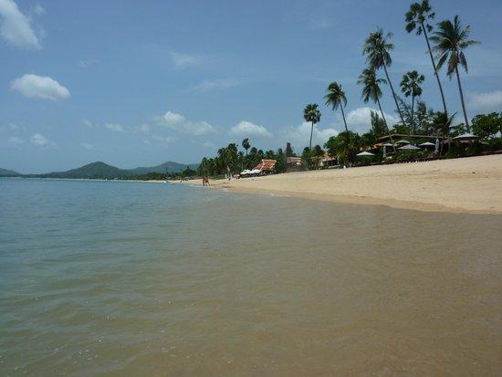 Saree Samui: la plage devant l'hôtel