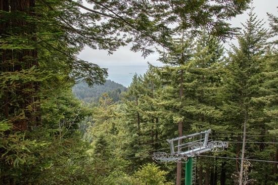 Trees of Mystery: you can see the ocean from the observation deck at the top of the sky tram