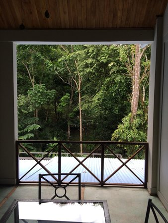 Hotel Plaza Yara: Gorgeous views of the rainforest from our balcony