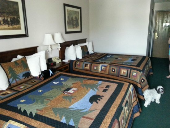 Black Bear Inn and Conference Center: double queen room on second floor