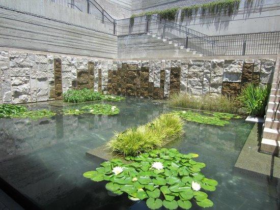 The Getty Villa: Getty pond